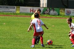 Gwarek Cup 2007-2008