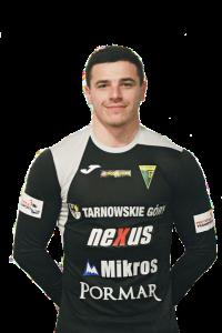 wisniewski_2020