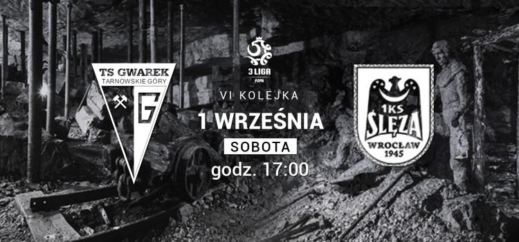 sleza-www (1)