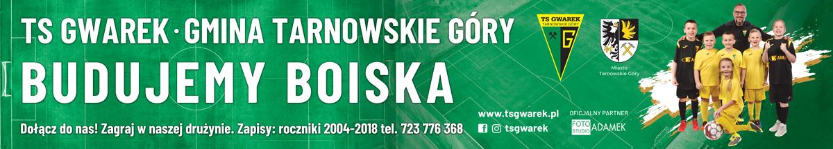 baner-przyszlosc-gwarek-500x90