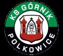 gornik_polkowice