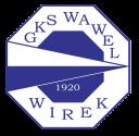 wawel_wirek